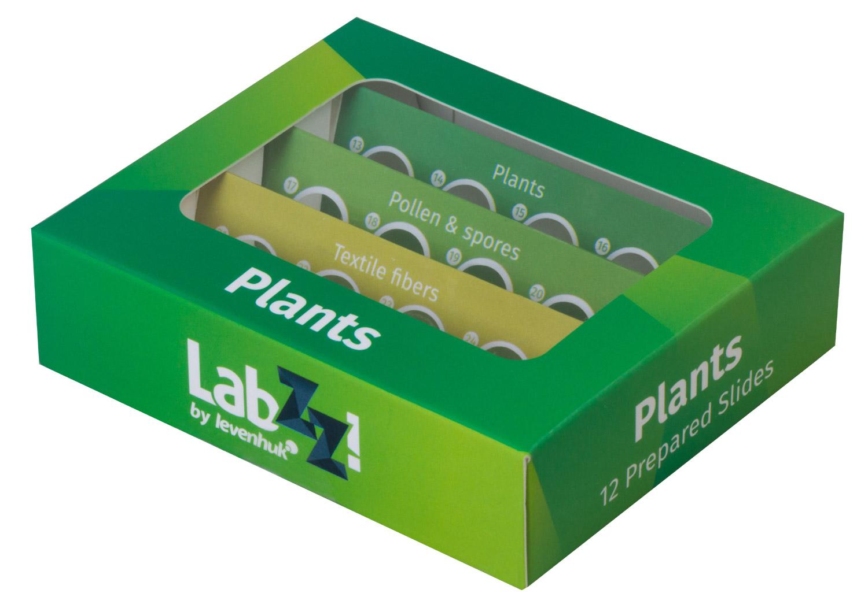 Картинка для Набор микропрепаратов Levenhuk (Левенгук) LabZZ P12, растения
