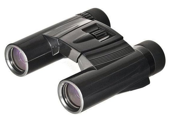 Картинка для Бинокль Kenko Ultra View 10х25 DH, черный