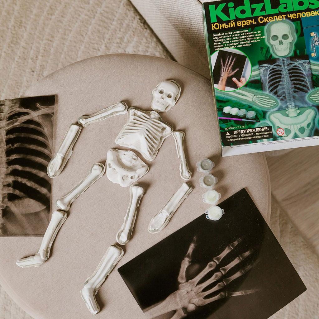 Картинка для Набор 4M 00-03375 «Юный врач. Скелет человека»