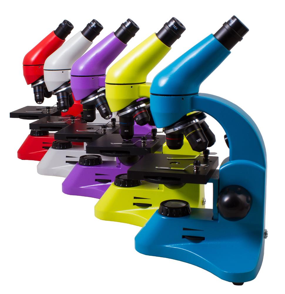 обычные предметы под микроскопом, фото предметов под микроскопом, предметы под микроскопом, фото привычных предметов под микроскопом