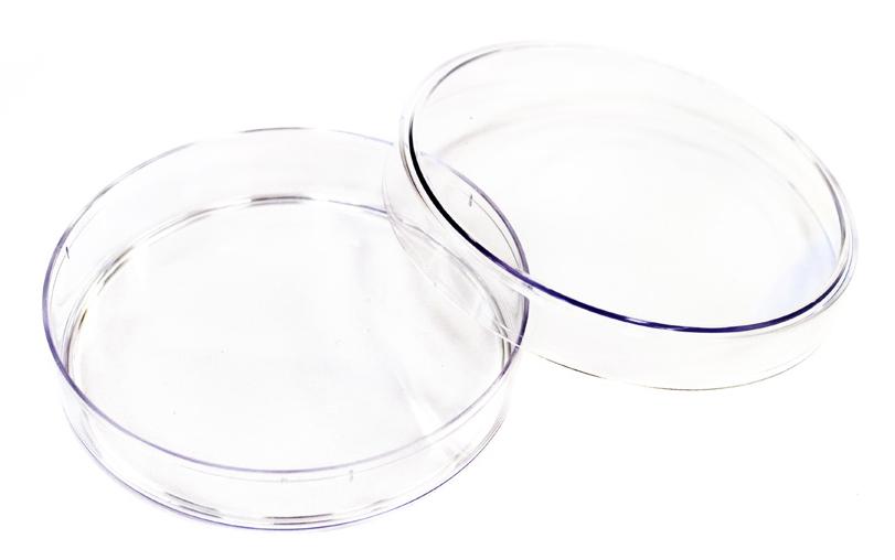 Картинка для Чашка Петри 100x20 мм, пластиковая, с крышкой