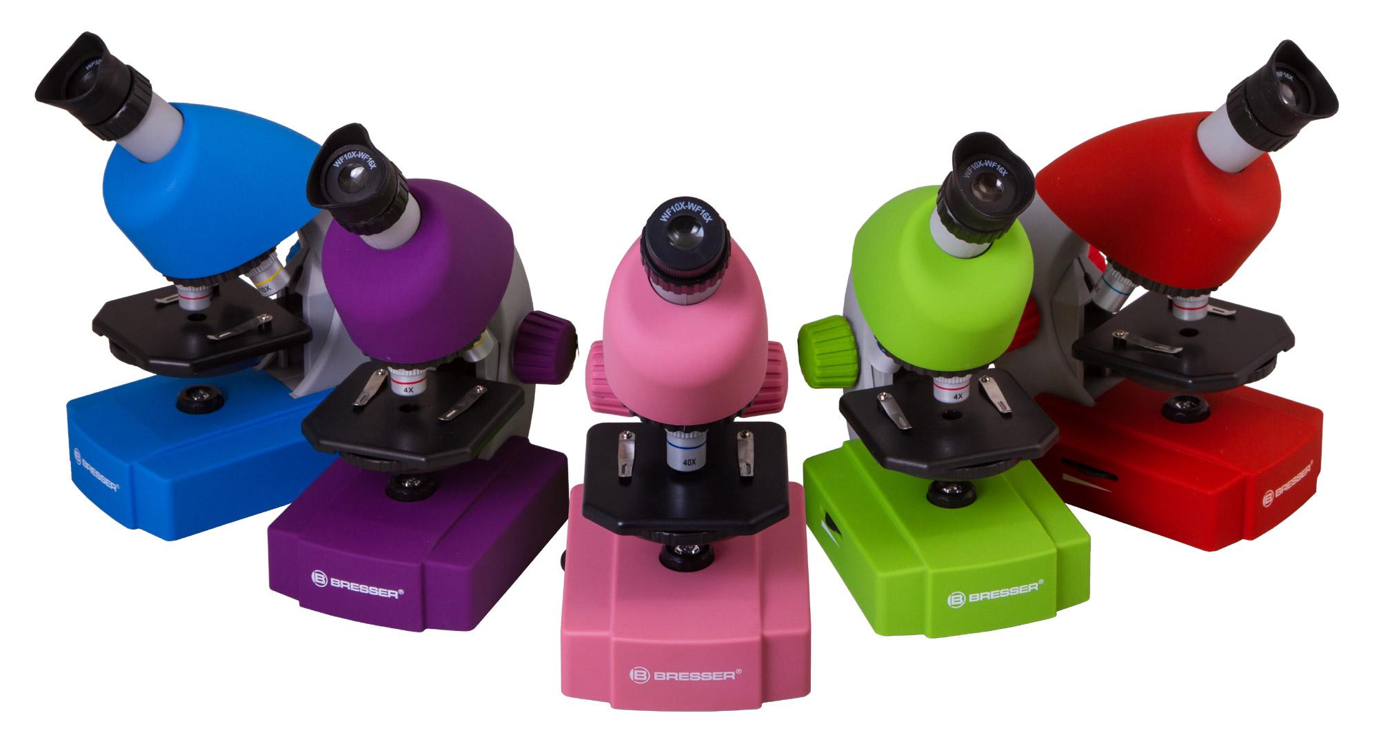 бородавка под микроскопом, бородавка под микроскопом фото, корни бородавки под микроскопом, корни бородавки фото под микроскопом
